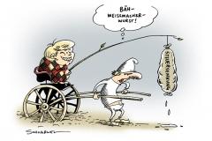 schwarwel-karikatur-steuer-steuersenkung-merkel-regierung-koalition
