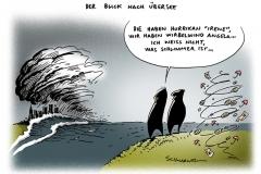 schwarwel-karikatur-irene-wirbelwind-hurrican-uebersee-