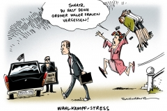 schwarwel-karikatur-wahlkampf-ordner-stress-frauen