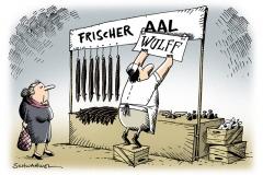 schwarwel-karikatur-aal-wulff-tv-interview-schaden