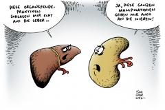 schwarwel-karikatur-organspende-skandal-nieren-leber