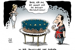 schwarwel-karikatur-eu-europaeische union- cameron-rosinen