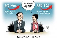 schwarwel-karikatur-afd-petry-lucke