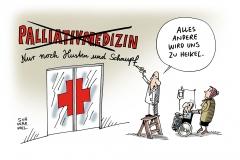schwarwel-karikatur-sterbehilfe-palliativmedizin-umstritten, ärzte