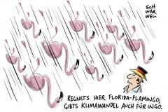 """Hurrikan über Klimawandelleugner Trumps USA: Auge von """"Irma"""" erreicht Florida Keys"""
