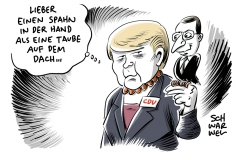 Jens Spahn als Gesundheitsminister: Merkel holt sich Kritiker ins Kabinet