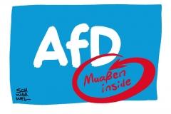 Druck auf Maaßen wächst: Bekam die AfD Hilfe vom Verfassungsschutz?
