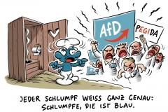 AfD-Schulterschluss mit PEGIDA in Chemnitz: Rechtsextremismus der Partei ist offensichtlich