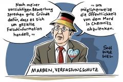Maaßen und das Video aus Chemnitz: Rechtspopulistische Behauptung ohne Beleg