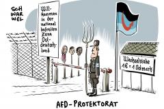 Aktuelle Emnid-Umfrage: AfD stärkste Kraft in Ostdeutschland