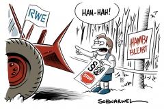 Urteil des Oberverwaltungsgerichts zum Hambacher Forst: Rodungsstopp für mindestens ein Jahr