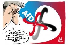 Beobachtungsobjekt durch Verfassungsschutz: Eigenes Gutachten bringt AfD in Bedrängnis