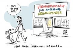 """Debatte um Organspende: Freiwillig oder """"doppelte Schranke"""""""