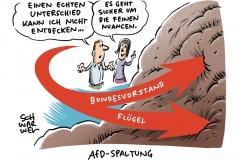 190708-afd-spaltung-1000-karikatur-schwarwel