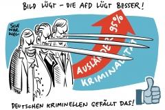 """Studie von Medienwissenschaftlern in """"Kriminalpolitische Zeitschrift"""": AfD schürt systematisch Furcht vor Zugewanderten"""
