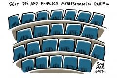 Namentliche Abstimmungen im Bundestag: AfD-Abgeordnete fehlen am häufigsten