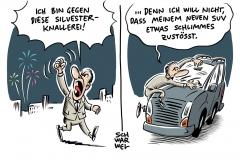 Silvesterfeuerwerk: Mehrheit für Böllerverbot