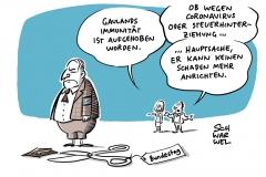 Bundestagsbeschluss wegen Vorwurf der Steuerhinterziehung: Immunität von Gauland aufgehoben