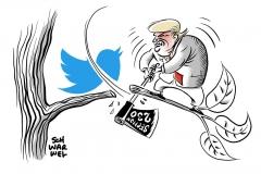Erlass zu sozialen Medien schadet ganzem Netz: Kritik an Trumps Twitter-Rachefeldzug