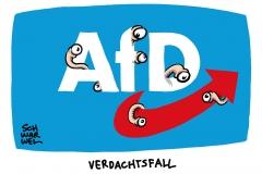 Rechtsextremismus: AfD jetzt bundesweit Verdachtsfall