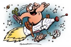 schweinevogel-ansicht-zfl-raketenschwein1000