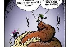 schweinevogel-sv-wdw025