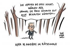 Wahldresdner Innenminister De Maizière: Unverständnis für die ostdeutsche Mentalität