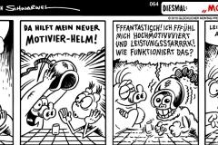 schweinevogel-064-motivier-helm