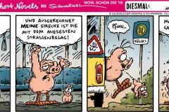 schweinevogel-075-busfahren-1000