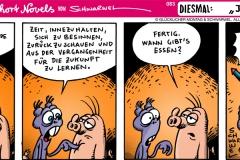 schweinevogel-083jahresneige-1000x400