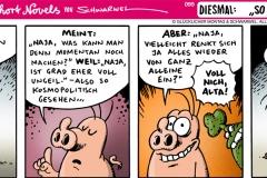 schweinevogel-095allgemein-1000x400