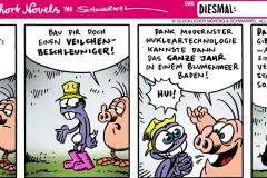 schweinevogel-096einelend-1000x400