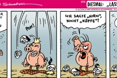schweinevogel-070-hirnregnen-1000x400