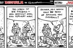 schweinevogel-056-fussball-fuellosofen