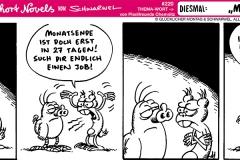 schweinevogel-220monatsende1000