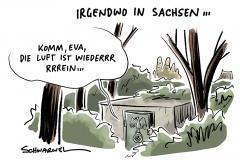 Erdrutschsieg: AfD punktet vor allem in Sachsen