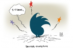 schwarwel-karikatur-twitter-kurssturz-wallstreet
