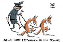 Fipronil-Belastung: Festnahmen im Eier-Skandal