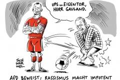 karikatur-schwarwel-boateng-gauland-nachbar-afd-rassismus-fussball