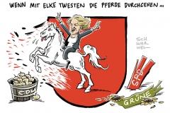 Regierungskrise in Niedersachsen: Grüne wechselt zu CDU – Elke Twesten: Ich bin keine Verräterin