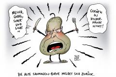 schwarwel-karikatur-birne-nachlass-altkanzler-kohl-gespraechsauszuege