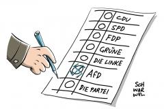 AfD: Neonazis in der Parteiführung ziehen in den Bundestag