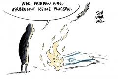 """Bundesregierung zu Verbrennungen israelischer Flaggen: """"Man muss sich schämen"""""""