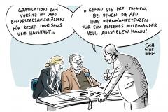 Bundestag vor Regierungsbildung: AfD übernimmt Vorsitz im Haushaltsausschuss, bei Recht und Tourismus