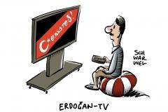 Strafen für TV-Sender: Sendepause nach Erdoğan-Kritik