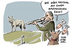 Tierschutz: Zustimmung der Bevölkerung zum Wolf bleibt hoch